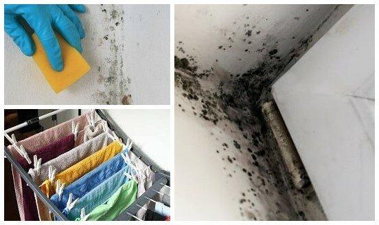 Najlepsze sposoby, by zapobiec powstawaniu pleśni w domu. Suszenie prania ma na to kluczowy wpływ