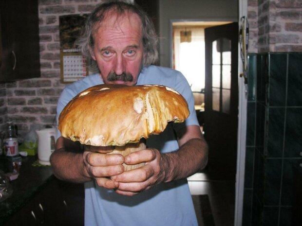 W swojej kolekcji ma nawet 1,5-kilogramowego prawdziwka. Król grzybów zdradza tajemnicę dobrych zbiorów