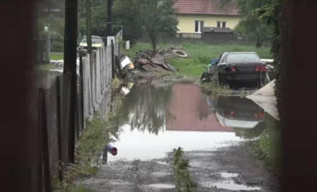 źródło: YouTube/ Miasto Kraków