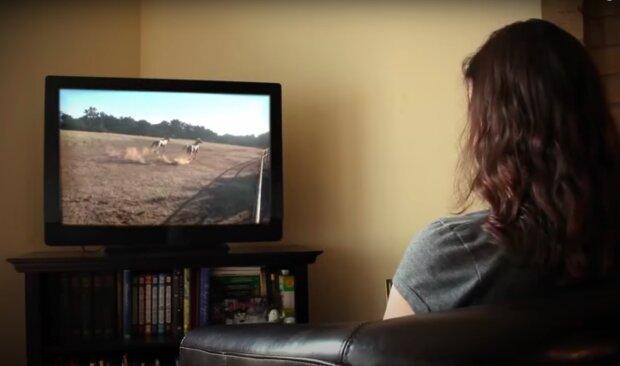 Oglądanie telewizji nie będzie już darmowe!/ YouTube:  Elijah Weinstein