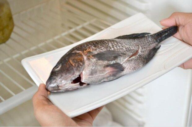 rozmrażanie ryb i mięsa, screen Google