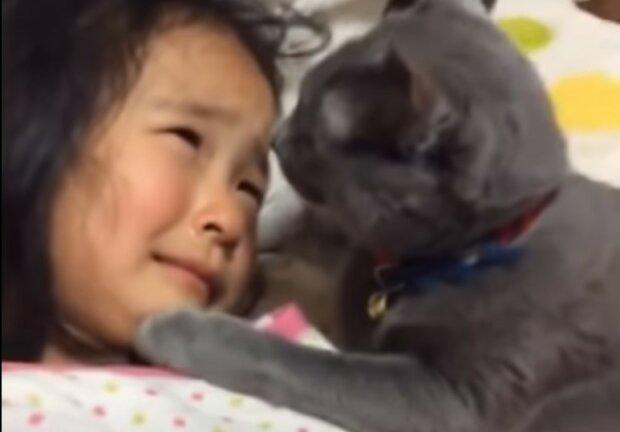Dziewczynka i kotek/screen YouTube @Hardik's offbeat