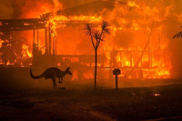Co naprawdę dzieje się w Australii. Odpowiedzi udziela Polka, mieszkająca w Australii