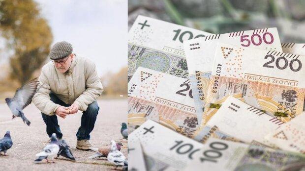 Najnowsze informacje w sprawie czternastej emerytury. Minister zdradził: wypłaty sporo później niż się spodziewano