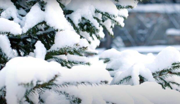 Śnieg/YouTube @Projekt Ciekawość