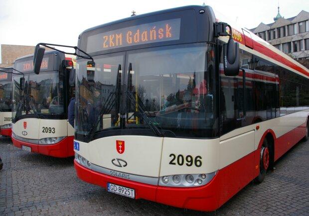 Gdańsk: będzie więcej połączeń autobusowych w mieście. Urzędnicy w końcu idą pasażerom na rękę