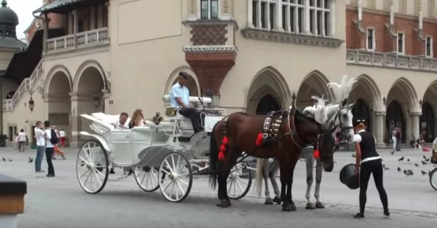 Kraków: dorożki znikają z krakowskiego rynku. Z jakiego powodu