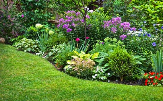 Piękny ogród dzięki zastosowaniu tylko jednego naturalnego środka / greenne.com/