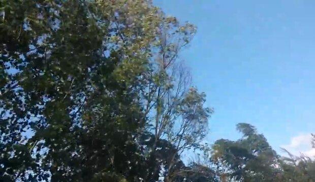 Silny wiatr/ YouTube @Wiatromen